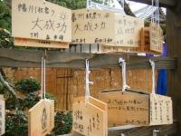 2018-11-05中尊寺菊祭り0138
