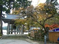 2018-11-05中尊寺菊祭り0135