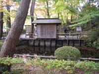 2018-11-05中尊寺菊祭り0155