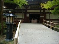 2018-11-05中尊寺菊祭り0160