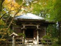 2018-11-05中尊寺菊祭り0170