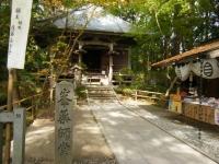 2018-11-05中尊寺菊祭り0169
