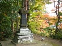 2018-11-05中尊寺菊祭り0182