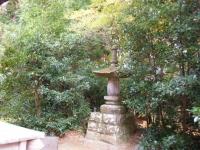 2018-11-05中尊寺菊祭り0183
