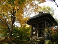 2018-11-05中尊寺菊祭り0189