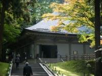 2018-11-05中尊寺菊祭り0198