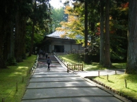 2018-11-05中尊寺菊祭り0197