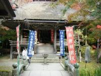 2018-11-05中尊寺菊祭り0201
