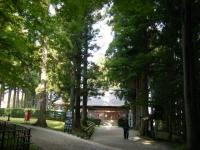2018-11-05中尊寺菊祭り0228