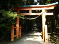 2018-11-05中尊寺菊祭り0227