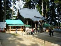 2018-11-05中尊寺菊祭り0235