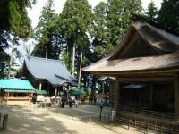 2018-11-05中尊寺菊祭り0232