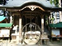 2018-11-05中尊寺菊祭り0242