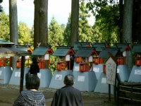 2018-11-05中尊寺菊祭り0241