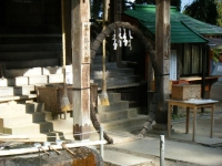 2018-11-05中尊寺菊祭り0239