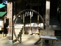 2018-11-05中尊寺菊祭り0244