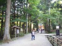 2018-11-05中尊寺菊祭り0259