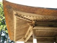 2018-11-05中尊寺菊祭り0257