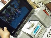 Victor UX-W7DVD-Sしろぷーうさぎ16