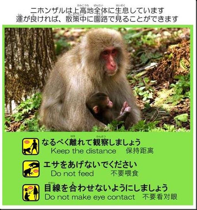 konashidaira201810-003-1
