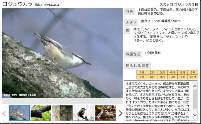 konashidaira201810-鳥類02