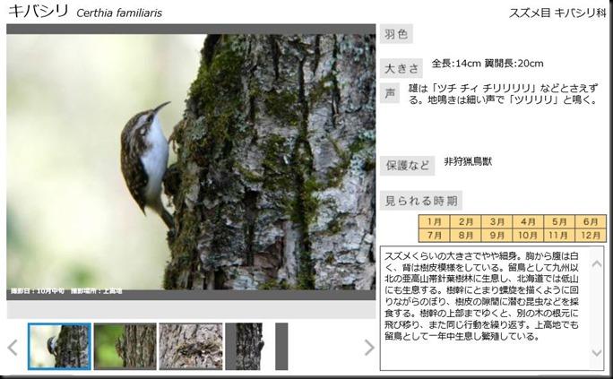 konashidaira201810-鳥類03