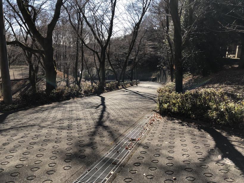 大戸緑地04