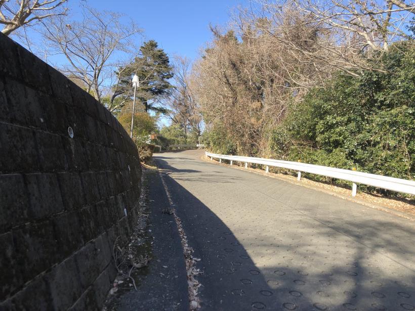 大戸緑地05