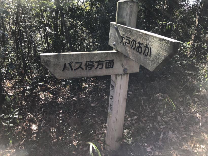 大戸緑地43