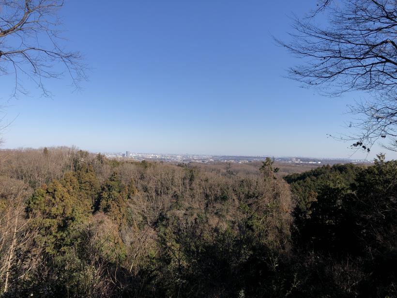 大戸緑地86