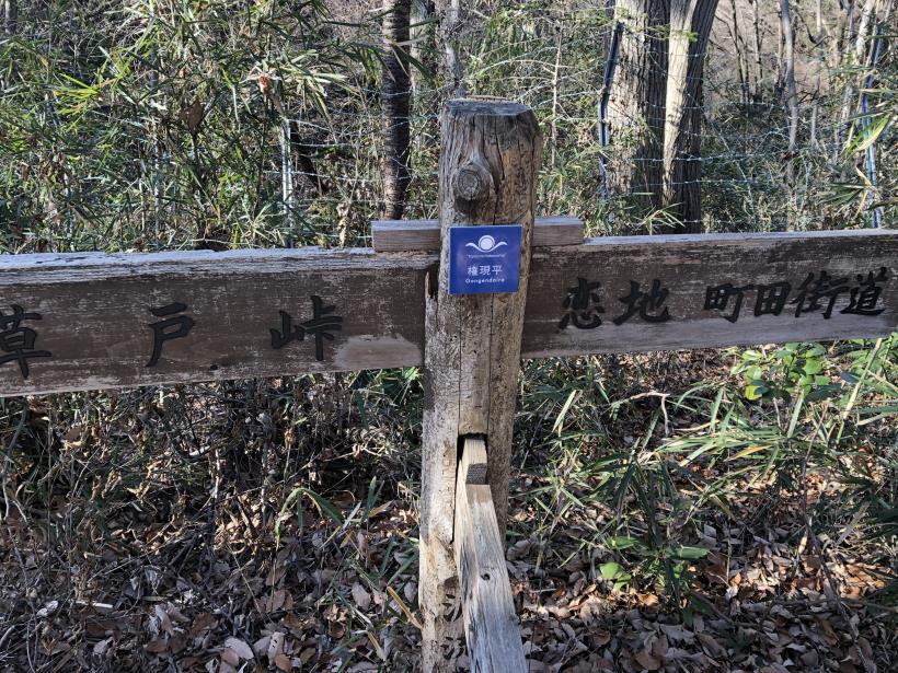 大戸緑地107