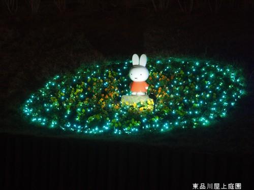 ライトアップ4