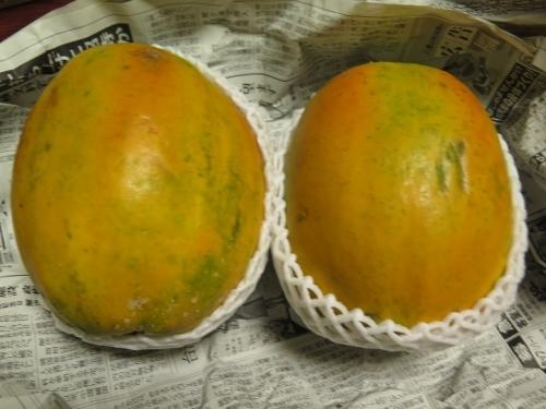 フルーツパパイヤ