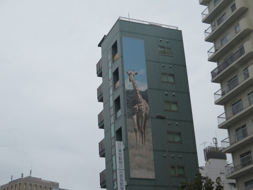 東京 キリン