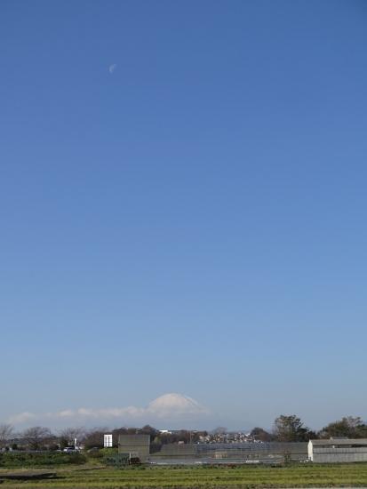 真昼の月と富士山