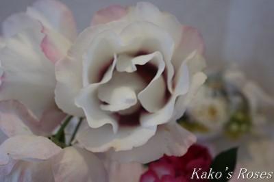 s-IMG_0763kako.jpg