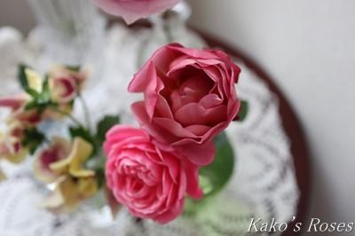 s-IMG_0795kako.jpg