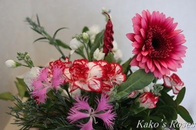 s-IMG_0879kako.jpg