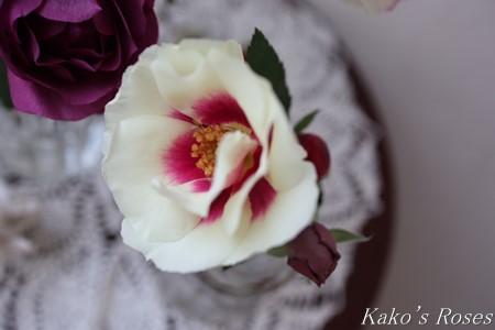 s-IMG_1111kako.jpg