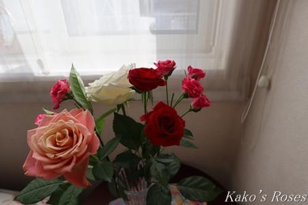 s-IMG_1380kako.jpg