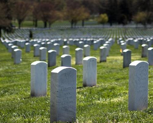 墓石 たくさん