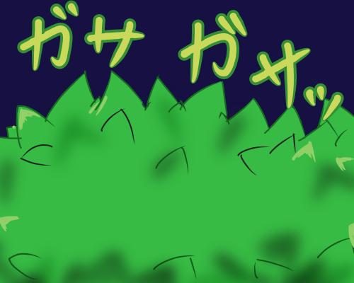 葉っぱのみ ガサガサッ 夜
