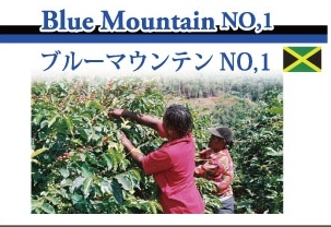 fuku_buruman_info.jpg