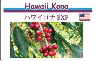 fuku_kona_info.jpg