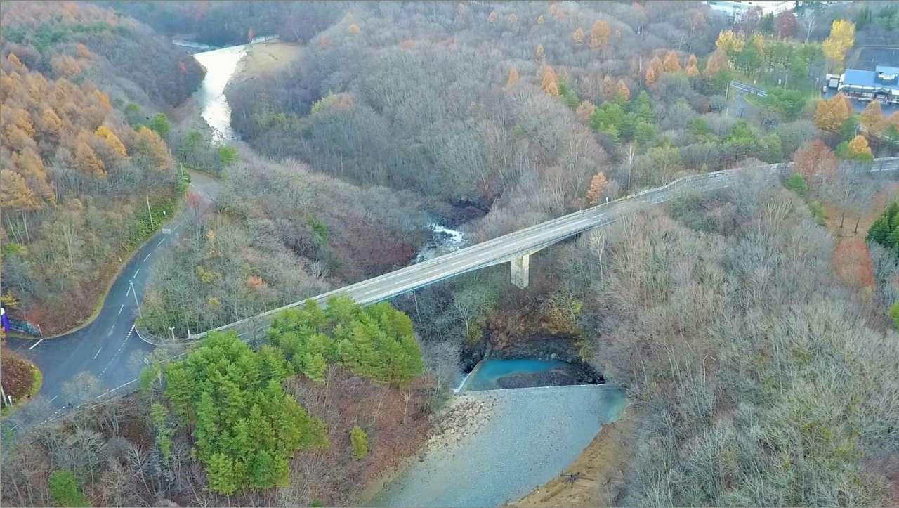 森の大橋-s