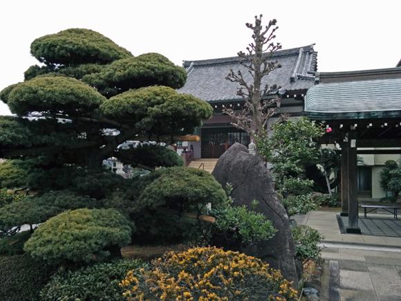 20190219_011 妙久寺