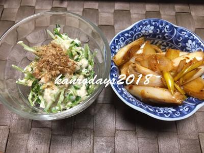 20181219_サラダと辛ネギ