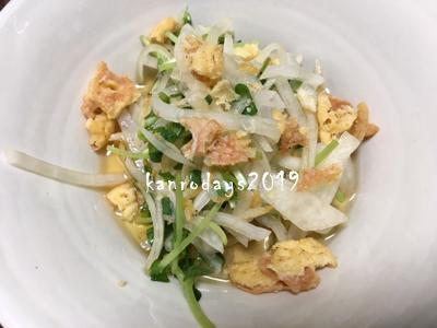 20190212_豆苗と大根と小海老のサラダ