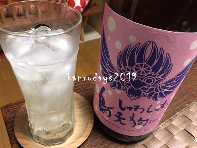 20190220_烏天狗しゅわしゅわ