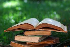 [ラノベ] 幼馴染の山吹さん あらすじ・感想 おすすめ恋愛小説! 激安で読める方法も!